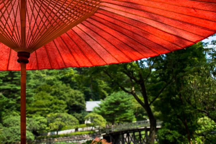 紫外線カットの傘
